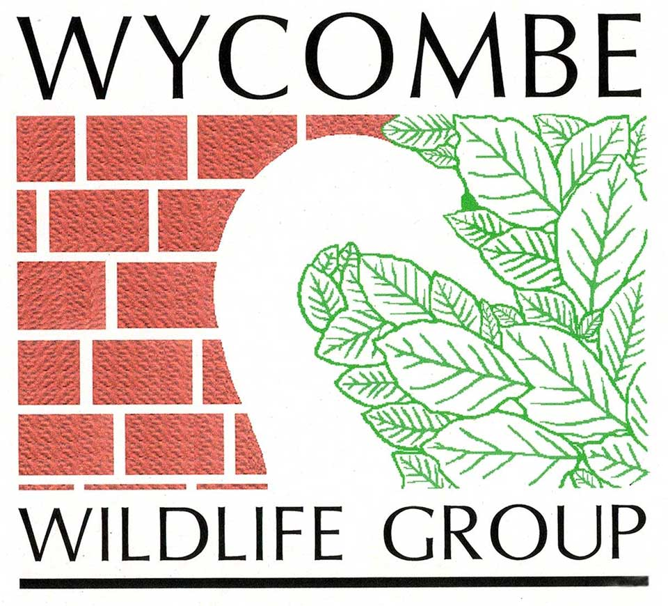 Wycombe Wildlife Group
